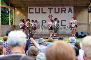 Cultura în parc