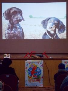 Manifest canin in Sala de cultură moldovenească