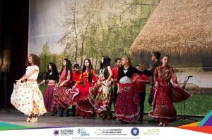 Platforma culturală TiMAF